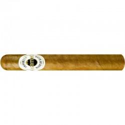 Ashton Corona einzelne Zigarre