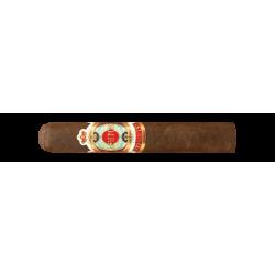 Ashton Symmetry Robusto einzelne Zigarre