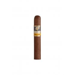 Cohiba Siglo 1 Tubos einzelne Zigarre