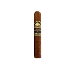 Mombacho Liga Maestro Pequeno einzelne Zigarre