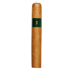 Patoro Brasil Gordo einzelne Zigarre