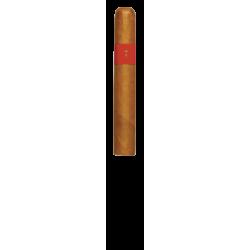 Patoro Gran Anejo Reserva Robusto einzelne Zigarre